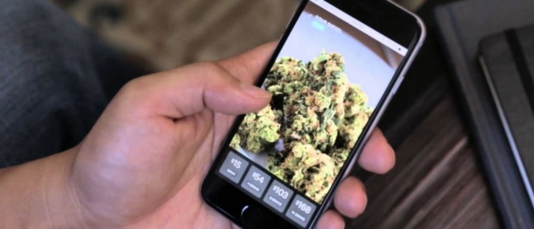 meadow_medical_marijuana_delivery_app